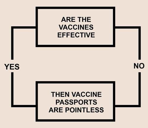 ¿El director de los CDC admitió accidentalmente que los pasaportes de vacunación son inútiles?