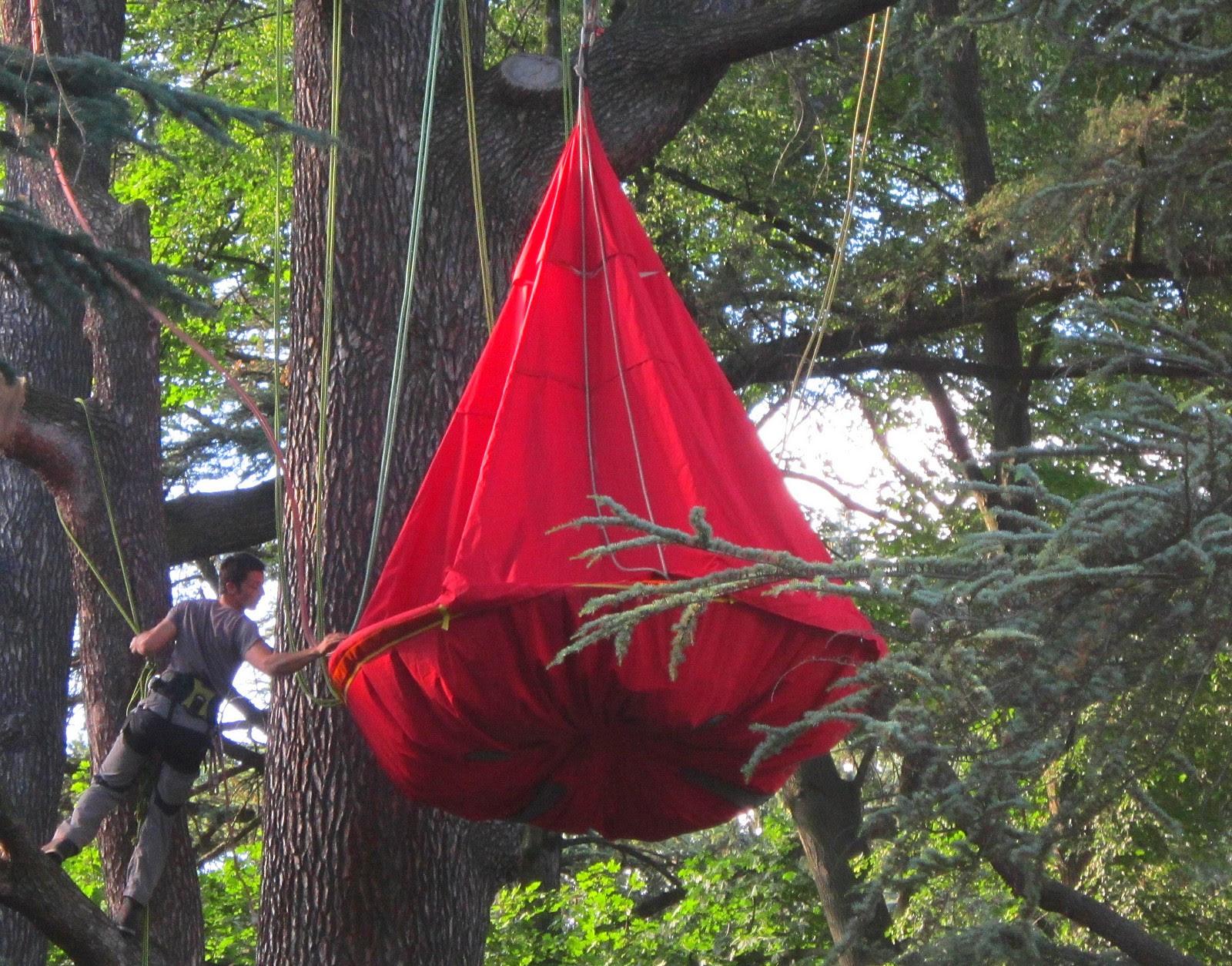 camping+dans+les+arbres