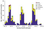 Thumbnail of Monthly number of confirmed malaria cases of different Plasmodium species, Yunnan Province, China, 2011–2013.