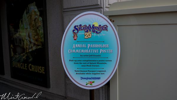 Disneyland Resort, Disneyland, Splash Mountain, 25, anniversary