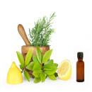 Como-preparar-remedios-naturales-1