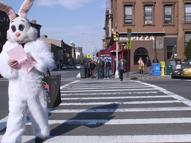 Bunny Suit, NYC