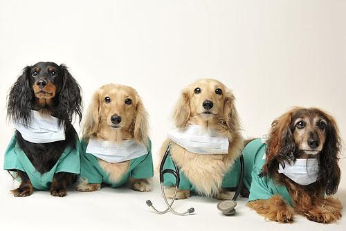 healthcare sheridan avenue boys