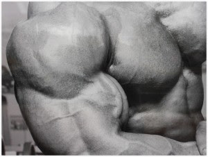 Muskelaufbau Arme Das Beste Training Für Starke Arme