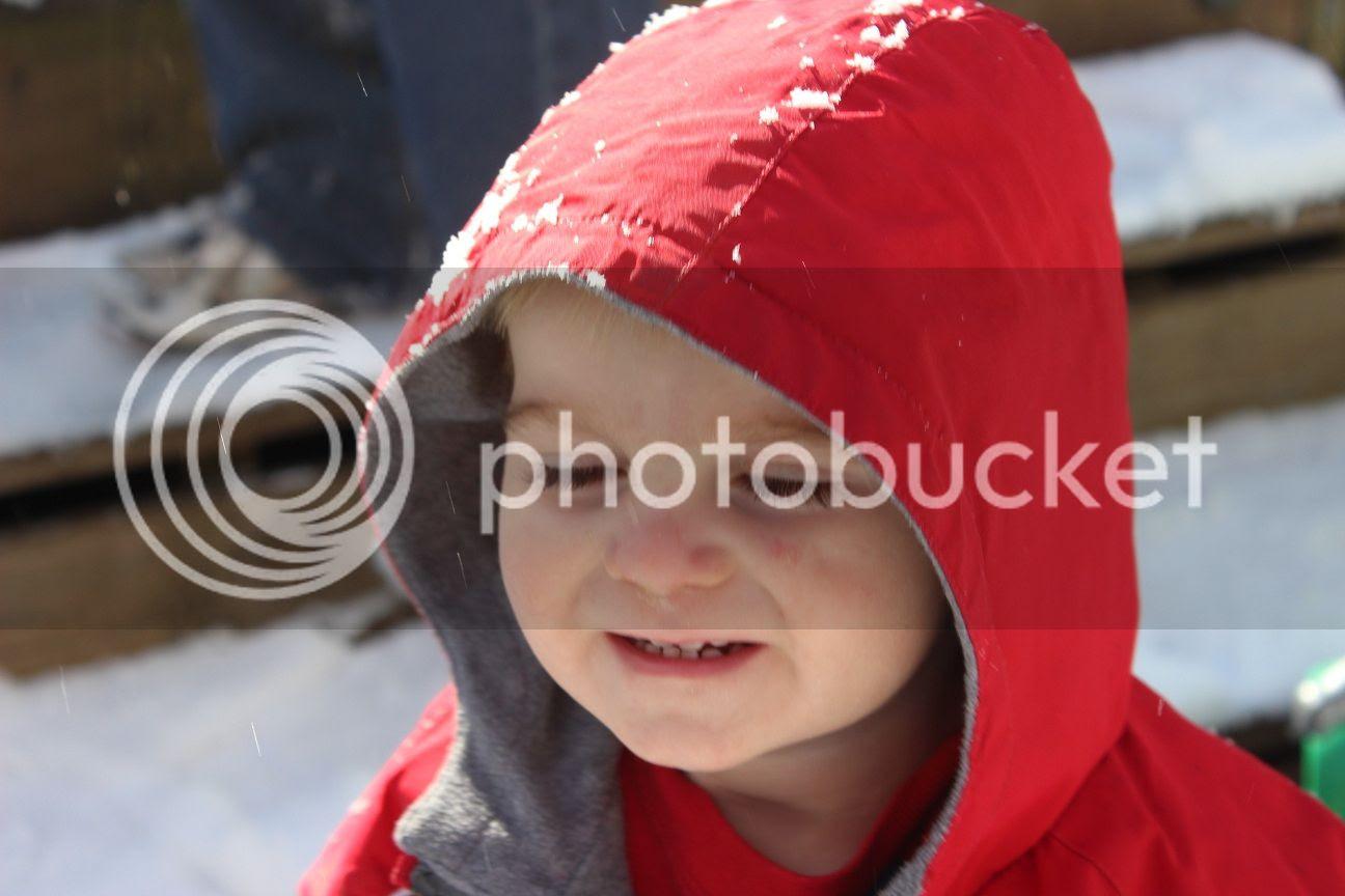 photo snow30_zps83bcdbab.jpg