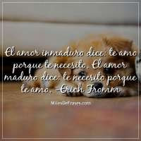 Imagenes Con Frases De Erich Fromm Frases Originales Frases Anime