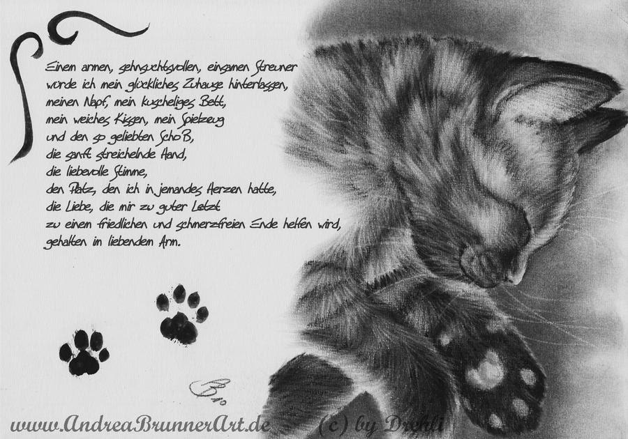Gedichte über Katzen