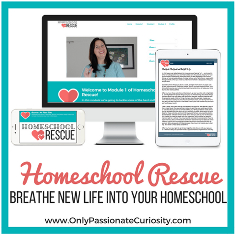 Homeschool Rescue | Review