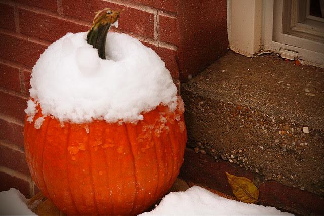 snowy-pumpkin-2