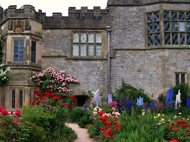 Roses and Delphiniums at Haddon Hall