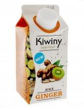 Succo Juice Ginger - Kiwi