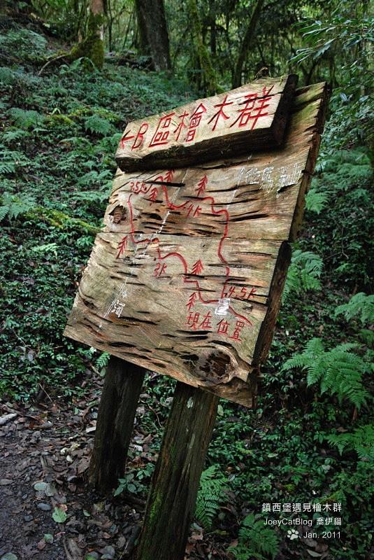 2011_0109_亞當,夏娃,國王,鎮西堡檜木群之旅DSC_0314
