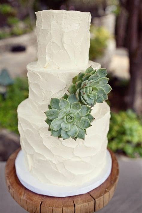 Cake   Succulents   wedding ideas   Pinterest