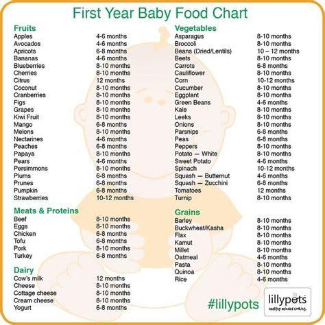 year baby food chart  rylee ann  year