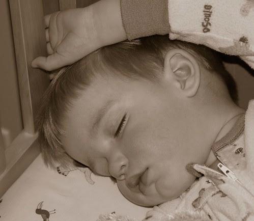 bennett sleeping - sepia, cropped