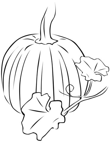 pumpkin with leaves coloring page  free printable