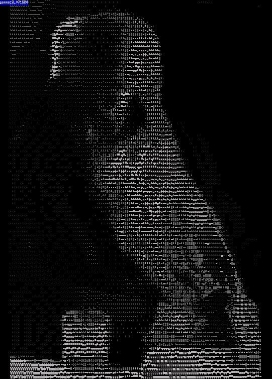 josef holecek in ascii art version 5
