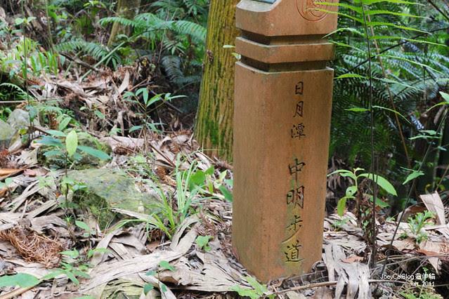 2011_0612_南投。日月潭水社親水步道,內湖山步道DSC_1646