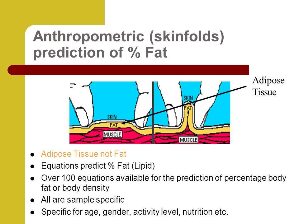 body fat percentage using skinfolds