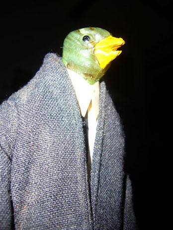 birdman1s