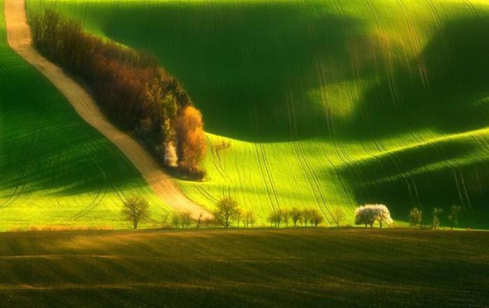 Зелёные ландшафты Моравии.
