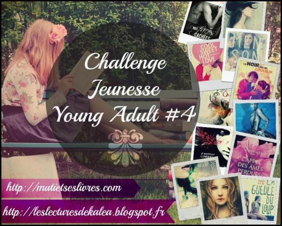 http://un-univers-de-livres.blogspot.fr/2014/10/challenge-jeunesse-young-adult-4eme.html