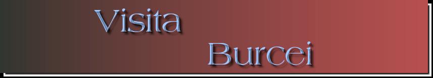 Visita                             Burcei