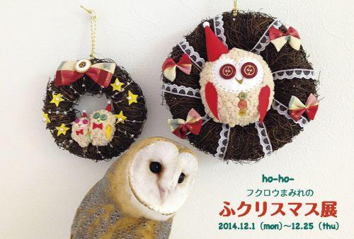 http://blog-imgs-53-origin.fc2.com/o/m/u/omushimeji/141112222238h3bu_l.jpg