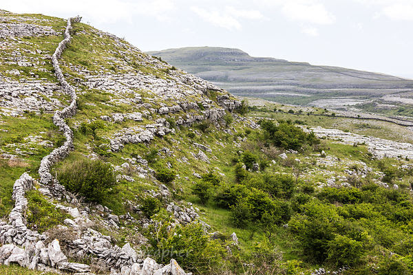 Dry stone walls, The Burren, Ireland