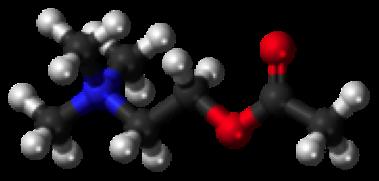 acetilcolinaione