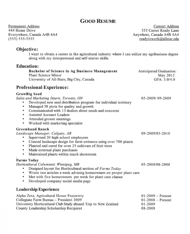 How to Write a Career Objective on a Resume  SampleBusinessResume.com : SampleBusinessResume.com