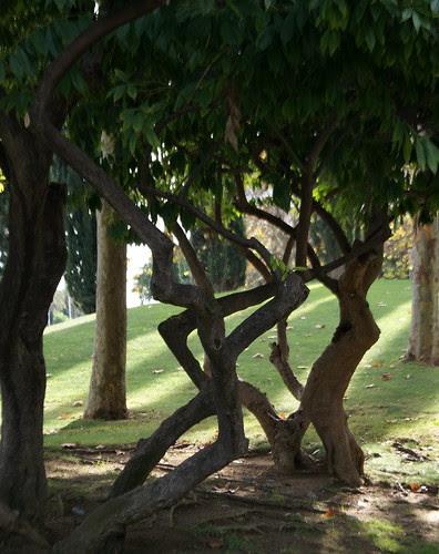 Parc de Carles I, Districte de Sant Martí