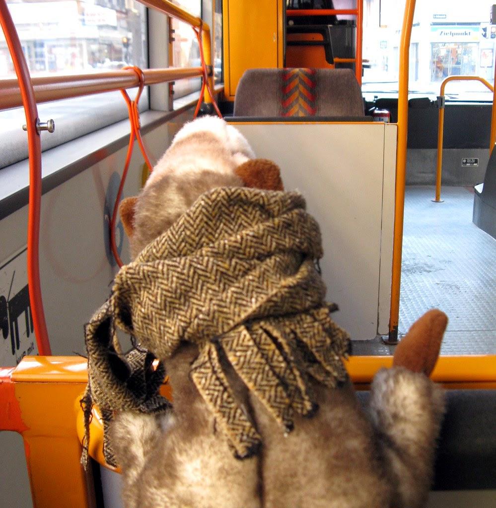 Blog- Wiesel fährt Bus