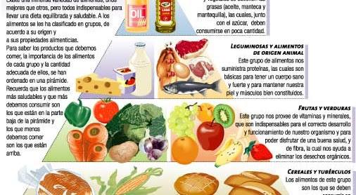 Los Alimentos Icarito