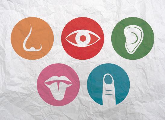 Aprender los sentidos a través de recursos educativos