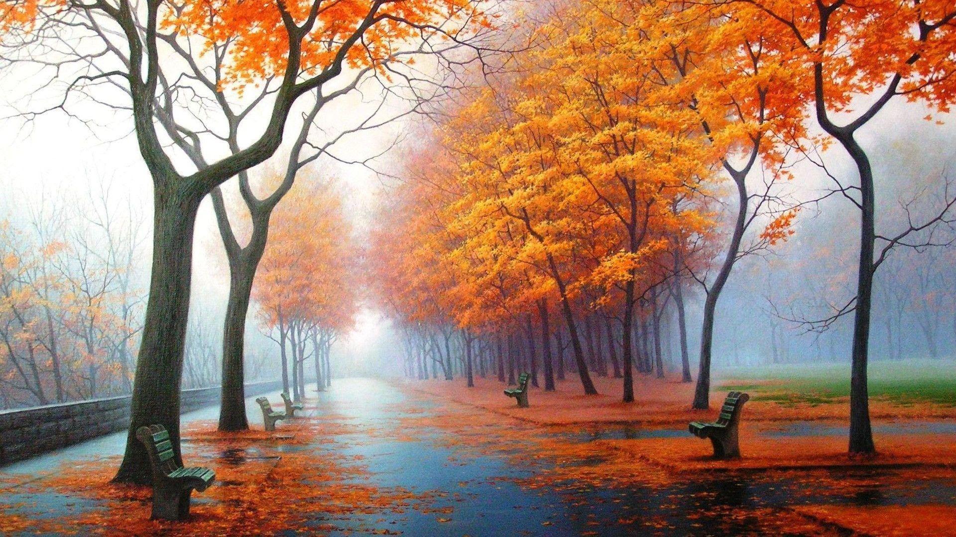 雨上がりの秋の風景 スマホの待ち受け画面やpcの壁紙に使える秋の