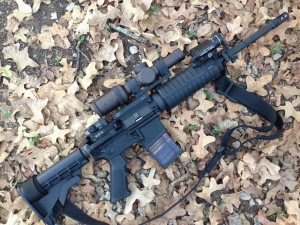 AR-15 on top of brown fall leaves