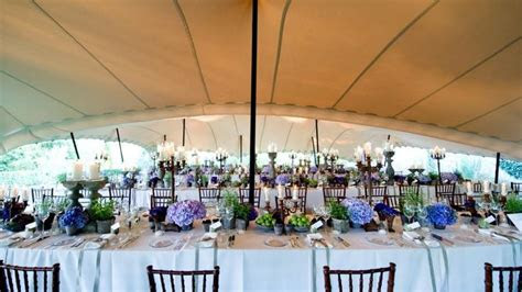 Summer Wedding under a stretch tent www.10x15.com
