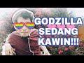 Terdampar di Kandang Godzilla