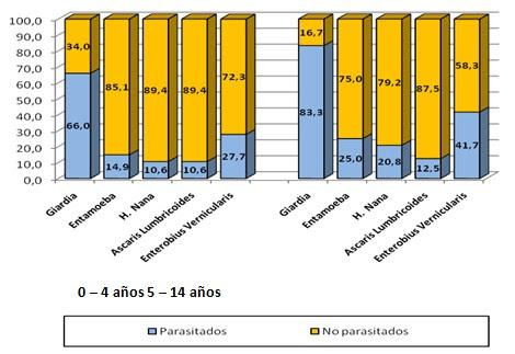 epidemiologia_parasitosis_intestinal/tipos_de_parasitos