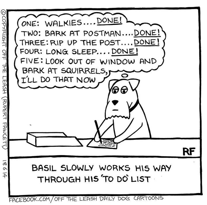 1000+ images about reTAIL reTREAT: Dog Cartoons on Pinterest ...