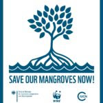 logo_save-our-mangroves-now-150x150