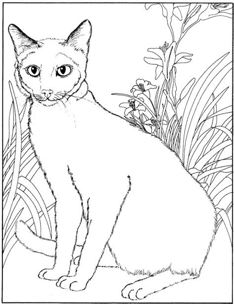 kids  funcom  coloring pages  cats  dogs