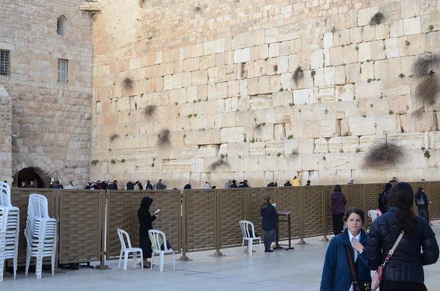 Israel 246