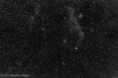 Gull to Thor Widefield by S Migol