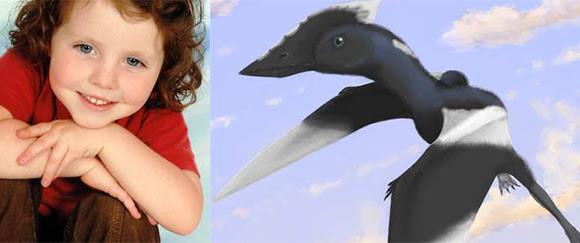 Daisy Morris νέο γένος και είδος πτερόσαυρου