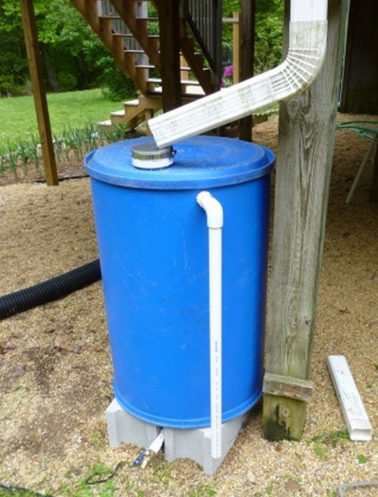 Rain Barrel Dog House Purpleechodigitalmediacouk