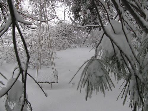 swing in snow