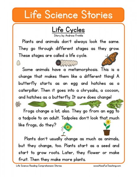 free life science reading comprehension life cycles 464x600