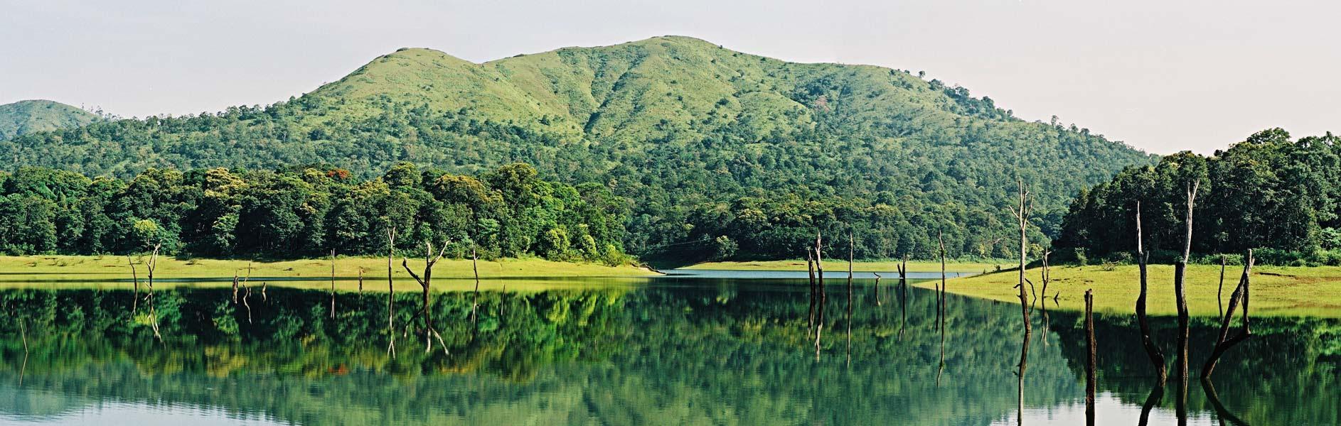 Periyar Lake, Tekkadi, Kerela